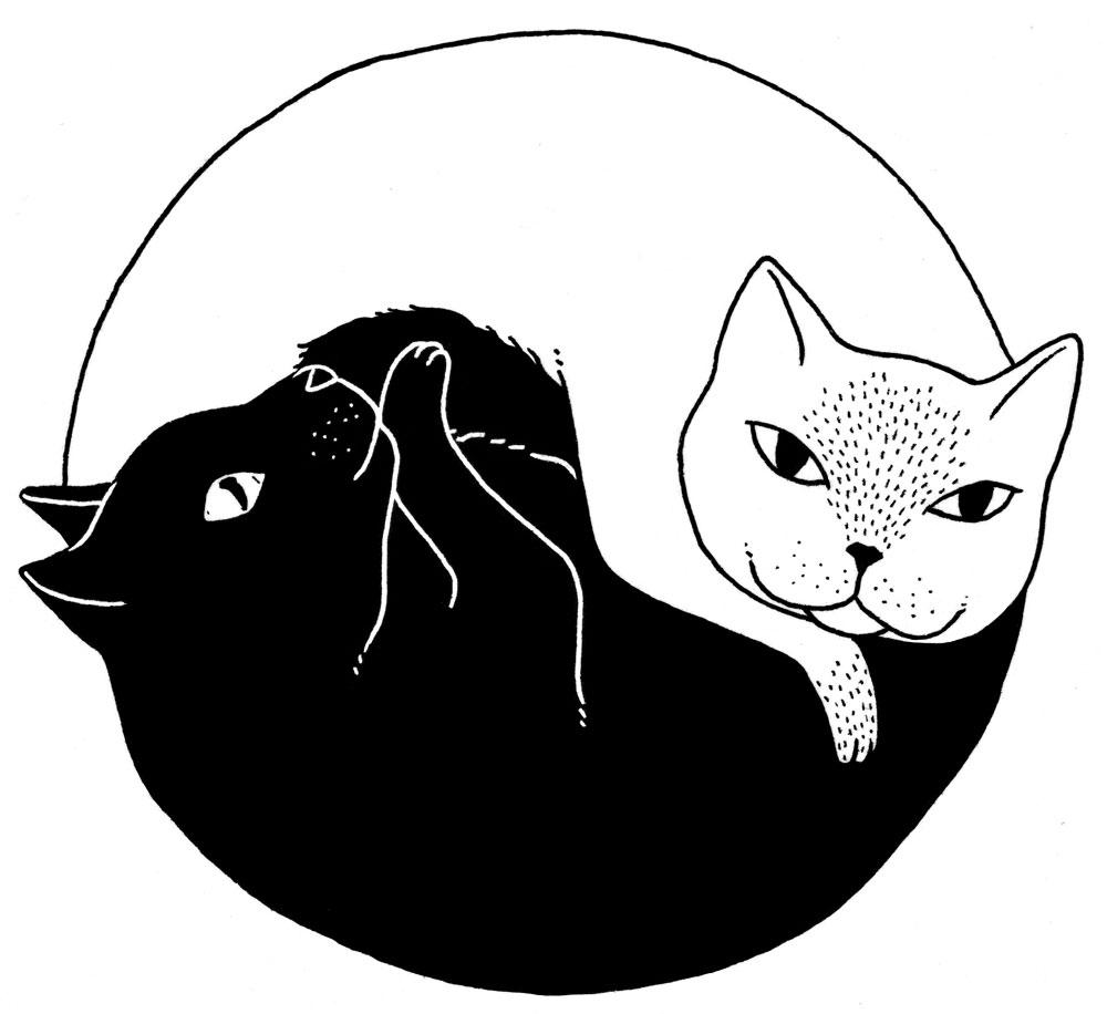 01-yin-yang-cats