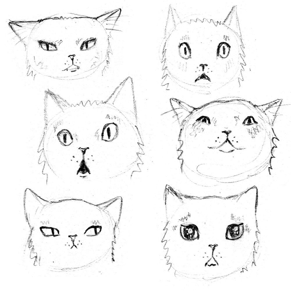 Cat-Expressions-IG