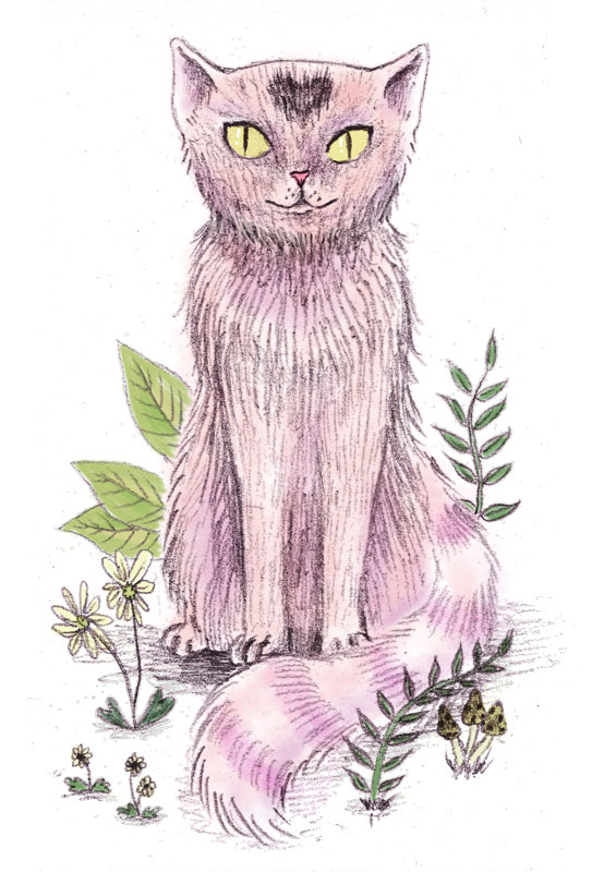 Heart-Cat-doodle