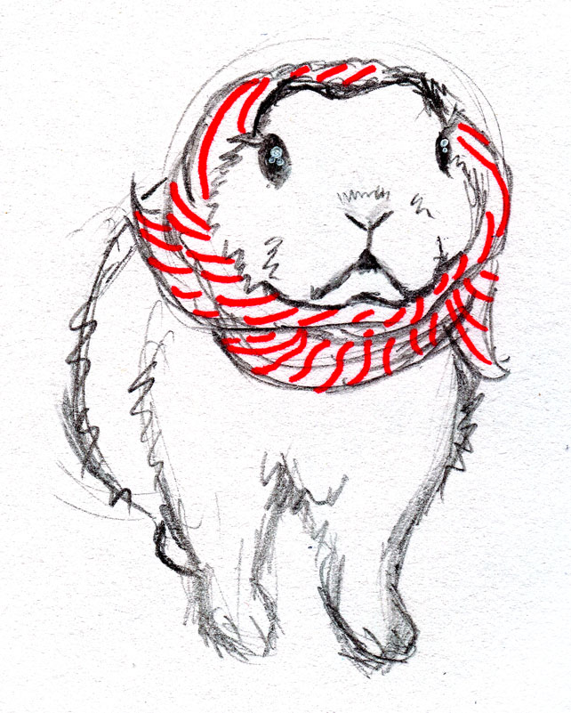 scarf-rabbit
