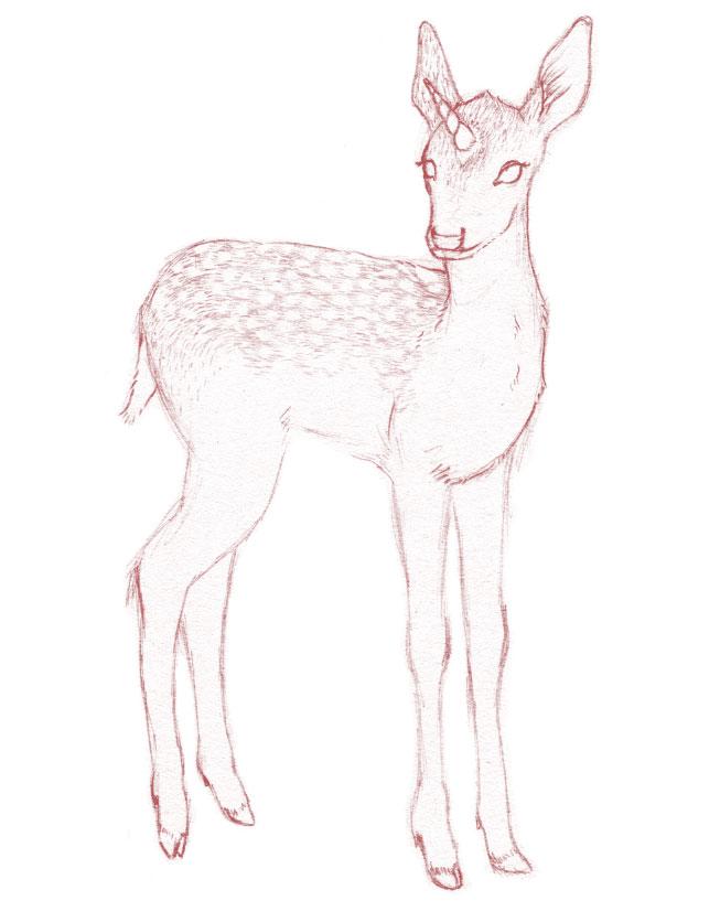 18-unicorn-fawn